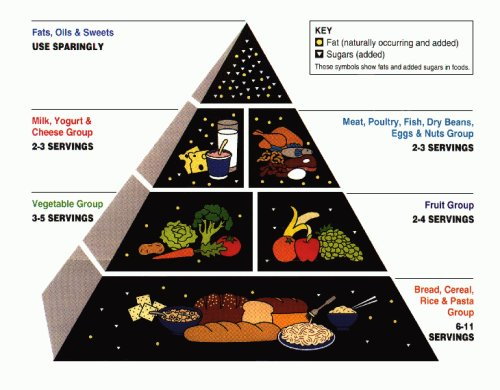 The USDA Food Pyramid: Not everything you see here is in the right spot